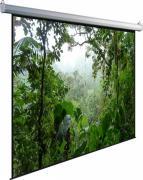 Экран Dinon Manual 183x244cm MW