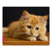 Коврик для мышки SPEEDLINK SILK (230x190x1.5 мм), котёнок