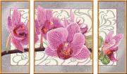 Ravensburger Раскрашивание по номерам Орхидея