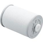 Очиститель воздуха Panasonic F-ZXCE50X (фильтр)