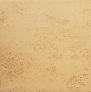 851 goldocker Agrob Buchtal Goldline плитка напольная 250x250x10 мм