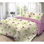 Комплект постельного белья Евро Нежность Весна с наволочками 50x70...