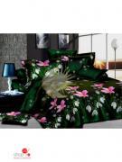 Комплект постельного белья Евро Чарующая ночь, цвет мультиколор