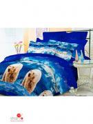 Комплект постельного белья двуспальный Pandora, цвет мультиколор