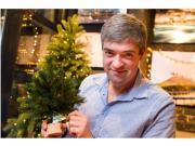 Искусственные ели Triumph Триумф ель Лесная Красавица 30 см на дерев....