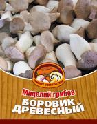 """Мицелий грибов """"Боровик древесный"""", 16 древесных палочек"""
