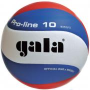 Волейбольный мяч Galaxy PRO-LINE BV5121S