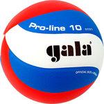 Мяч волейбольный Gala Pro-Line 10 размер 5, цвет бело-голубо-красный...