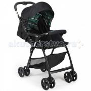 Прогулочная коляска Joie AireSkip Green Stripe