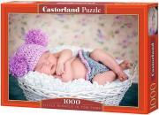 Castorland Пазл - Маленькое чудо