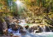 Castorland Пазл Лесной ручей 2000 элементов