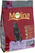 """Корм сухой Molina """"Adult Maxi"""" для взрослых собак крупных пород, 3 кг"""
