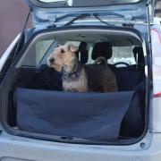 """i3412.com Автогамак для перевозки собак """"OSSO Car Premium"""" с защитой..."""