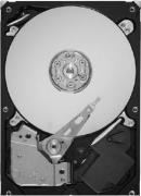 Жесткий диск Seagate ST1500DL003