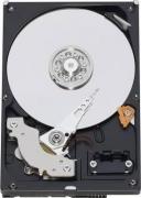 Жесткий диск Western Digital WD15EARX