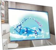 LCD телевизор Avis AVS220F