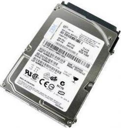 жесткий диск IBM 40K1036