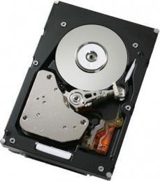 жесткий диск IBM 49Y2078