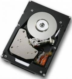 жесткий диск IBM 81Y9730