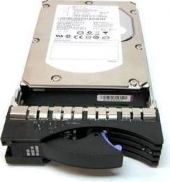 жесткий диск IBM 40K1025