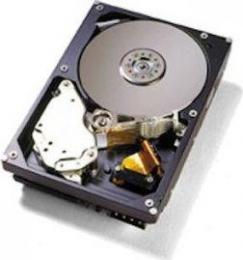 жесткий диск IBM 43X0814