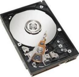 жесткий диск IBM 49Y1871