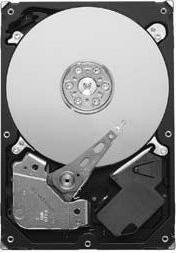 жесткий диск Seagate ST31000322CS