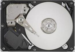 жесткий диск Seagate ST3500620SS