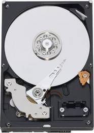 жесткий диск Western Digital WD10EARX