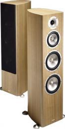 напольная акустика Acoustic Energy Radiance 3
