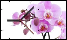 настенные часы Time2Go 1016 Орхидеи