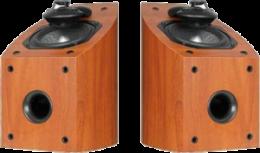 полочная акустика Mirage OMNI 150CH-1