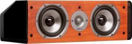 полочная акустика Polk Audio TSi CS10