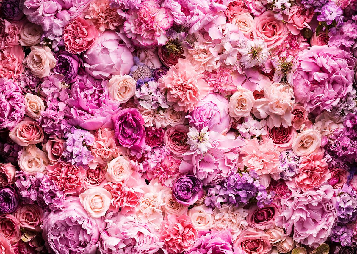строительства красивые картинки на фон с живыми цветами гайд расскажет