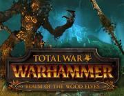 Право на использование (электронный ключ) SEGA Total War: WARHAMMER - The Realm of the Wood Elves DLC