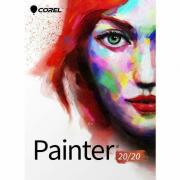 Painter 2020 License (51-250)