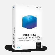 Право на использование (электронный ключ) MAGIX Sound Forge Audio Cleaning Lab 2
