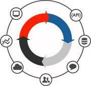 Право на использование (электронно) Embarcadero RAD Server Single Client Device or Single Multi-site Back-end Add-on 5 users