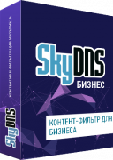SkyDNS Бизнес. 10 лицензий на 1 год