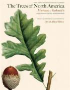 Sibley David Allen. The Trees of North America: Michaux and Redoute's American Masterpiece ISBN 9780789212764.