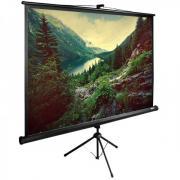 Экран Cactus 220x220см TriExpert CS-PSTE-220X220-BK напольный рулонный