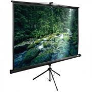 Экран Cactus 165x220см TriExpert CS-PSTE-220X165-BK напольный рулонный