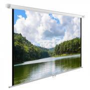 Экран Cactus 150x240см WallExpert CS-PSWE-240X150-WT настенно-потолочный рулонный