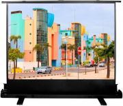 Экран Cactus CS-PSFLE-160X120