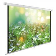 Экран Cactus 200x200см WallExpert CS-PSWE-200X200-WT настенно-потолочный рулонный