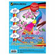 Brauberg Картон цветной А4 Тонированный в массе 10 цветов в папке 100 листов