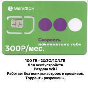 Мегафон интернет 100 ГБ 300 руб./мес.