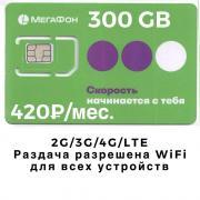 Интернет Мегафон 300 ГБ - 420 руб./мес.