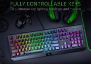 Игровая клавиатура Razer BlackWidow 2019 Green Switch Black (RZ03-02861100-R3R1)