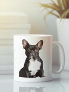Aksisur Кружка с изображением Собака, Французский бульдог (Dog) белая 0030
